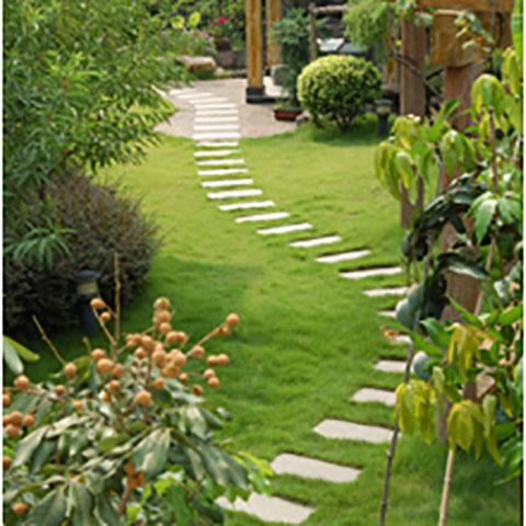 Green Lawn Sprinkler Systems   Castle Rock, CO, 80109   +1 (303) 814-6847